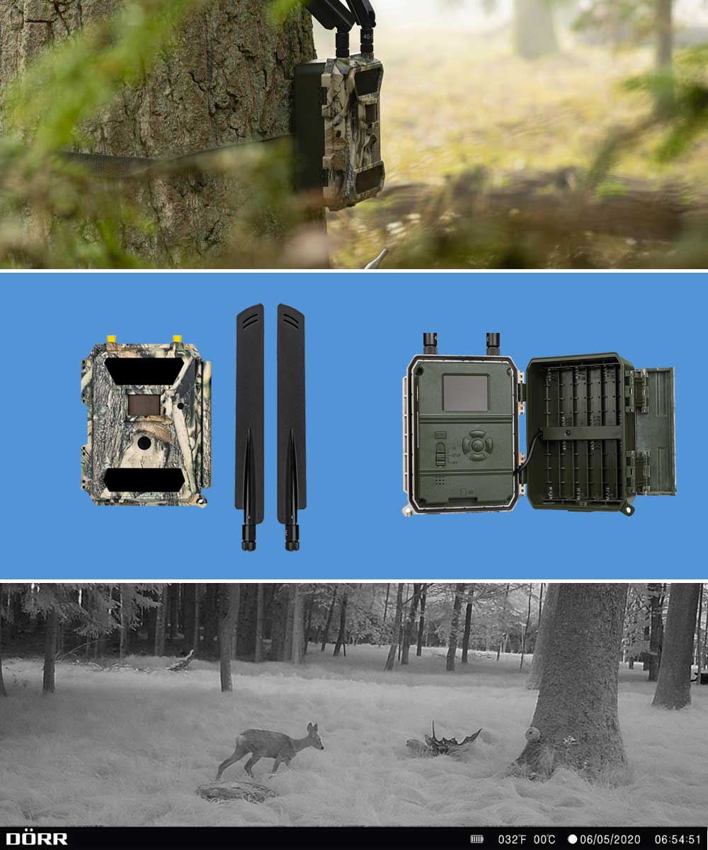 Dorr snapshot cloud 4G sits on a tree next to a sample image of a deer in the woods.