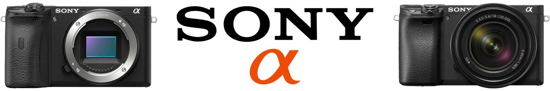 Sony mirrorless logo