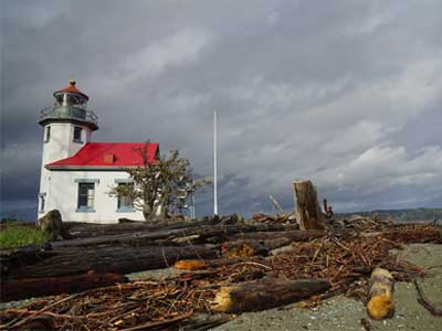 Photo of a lighthouse and fallen trees