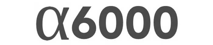 Sony a600 logo
